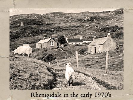 Reinigeadal 197612